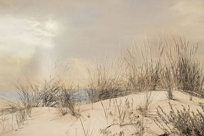Rehoboth Photograph - Beach Dunes by Lori Deiter