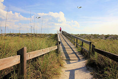 Photograph - Beach Entrance by Rosalie Scanlon