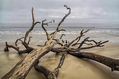 Photograph - Beach Erosion 12 by Jim Dollar