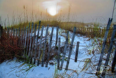 Photograph - Beach Fence At Sunset by David Arment