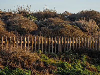 Photograph - Beach Fence by Derek Dean