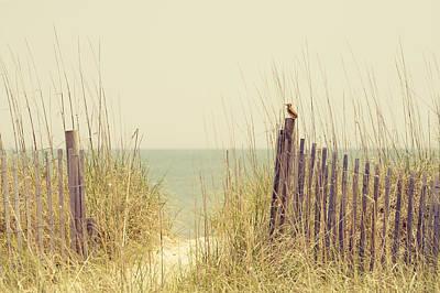 Beach Fence In Grassy Dune South Carolina Art Print