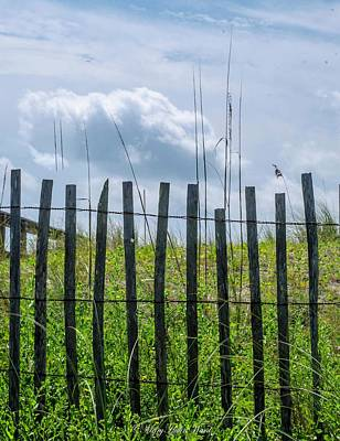 Photograph - Beach Fence by Fall in Love with Moments