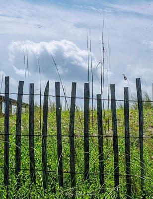 Photograph - Beach Fence by Mary Hahn Ward