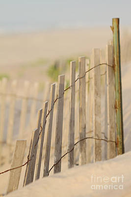 Beach Fences Art Print
