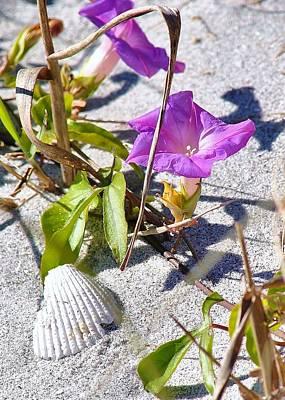 Photograph - Beach Flowers by John Hintz