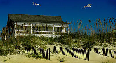 Photograph - Beach Fly Over by James C Thomas