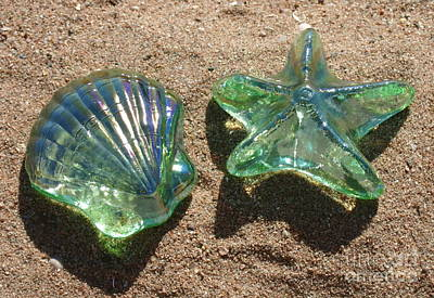 Photograph - Beach Glass by Cindy Lee Longhini