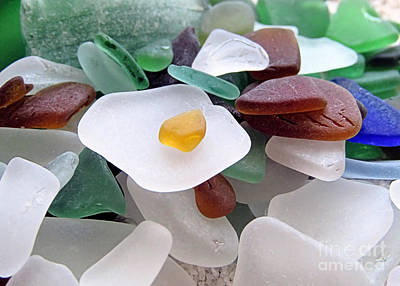 Photograph - Beach Glass Collection by Janice Drew