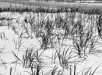 Photograph - Beach Grass 6 With Waves Bw by Mary Bedy