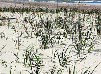 Photograph - Beach Grass 6 With Waves by Mary Bedy