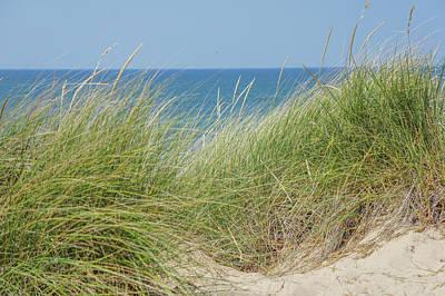 Beach Photograph - Beach Grass by Art Spectrum