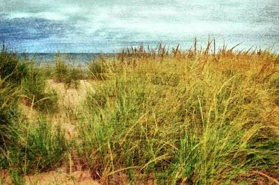 Digital Art - Beach Grass Path - Painterly by Michelle Calkins