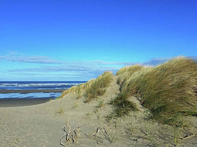Photograph - Beach Grass by Suzy Piatt