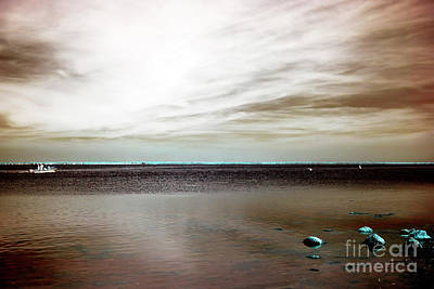 Photograph - Beach Haven Bay Infrared by John Rizzuto