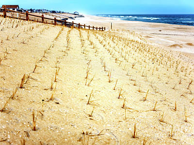 Photograph - Beach Haven Dune Angles At Long Beach Island by John Rizzuto