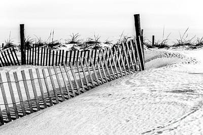 Photograph - Beach Haven Dune by John Rizzuto