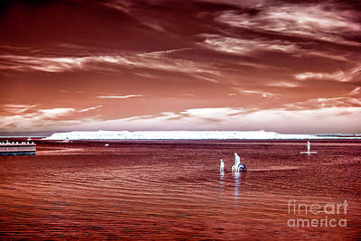 Photograph - Beach Haven Reds by John Rizzuto