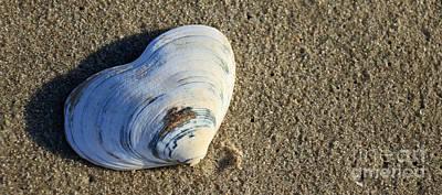 Photograph - Beach Heart by Mary Haber