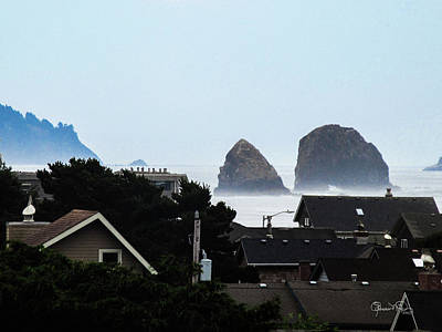 Photograph - Beach House View by Susan Molnar