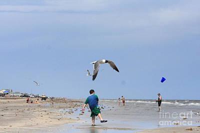 Photograph - Beach Humor by Kim Henderson