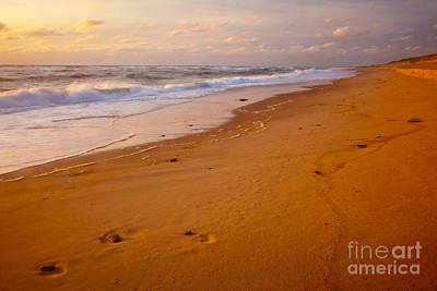 Photograph - Beach Impressions by Susan Cole Kelly
