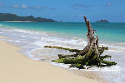 Photograph - Beach In Hawaii by Anthony Jones