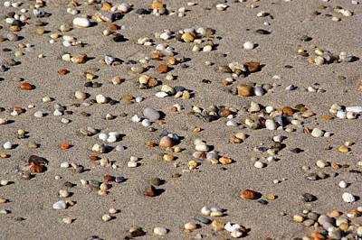 Photograph - Beach Jewels by Lynda Lehmann