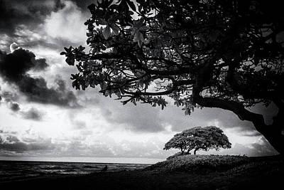 Photograph - Beach Kauai Hawaii Film Noir Black And White 7r2_dsc4530_01112018 by Greg Kluempers