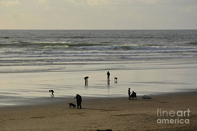 Photograph - Beach Life by Tanya Searcy