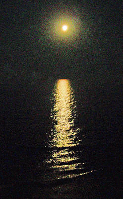 Beach Moonglow Print by Patricia Taylor