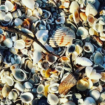 Ocean Photograph - Beach Of Shells by Ric Schafer