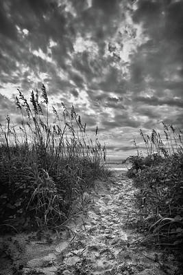 Photograph - Beach Path by Denis Lemay
