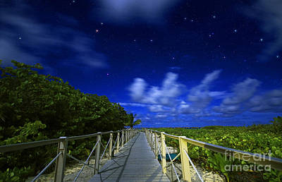 Photograph - Beach Path Under Starry Sky by Charline Xia