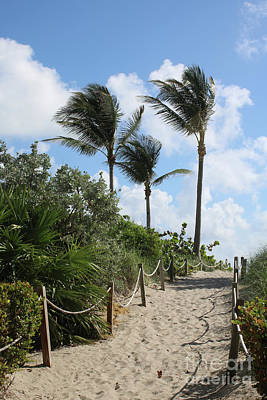 Photograph - Beach Path With Palm Trees by Carol Groenen