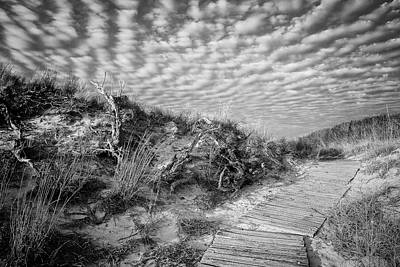 Photograph - Beach Pathway by David Cote