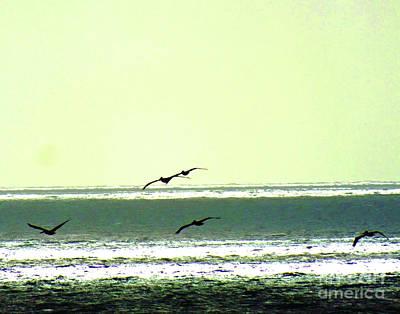 Photograph - Beach Patrol by Lizi Beard-Ward
