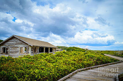 Photograph - Beach Picnic Shelter by David Smith