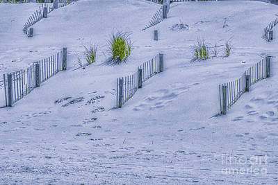 Beach Sand Dunes And Fence Art Print