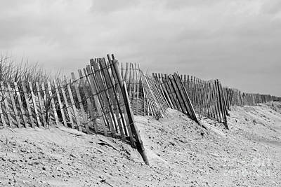 Photograph - Beach Scene by Denise Pohl