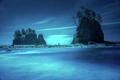 Photograph - Beach Sea Stacks With Trees by William Lee