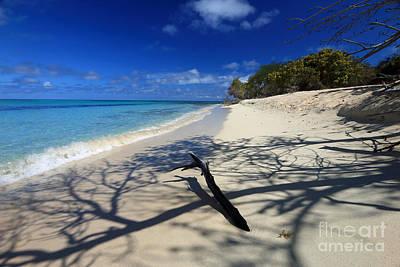 Photograph - Beach Shadows by Mary Haber