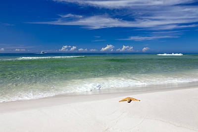Emerald Coast Photograph - Beach Splendour by Janet Fikar
