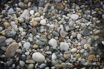 Photograph - Beach Stones by Paul Cammarata