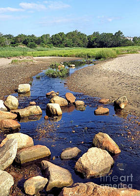 Photograph - Beach Stream by Janice Drew