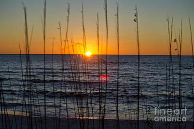 Photograph - Beach Sunset by David Arment