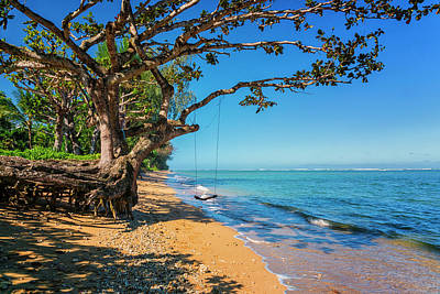 Photograph - Beach Swing Kauai Hawaii 7r2_dsc4977_01152018 by Greg Kluempers
