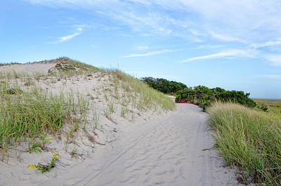 Photograph - Beach Trail by Donna Doherty