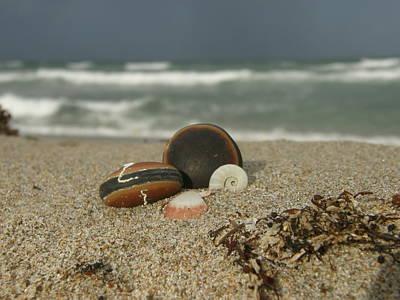 Beach Treasures 1 Art Print by Kimberly Mohlenhoff