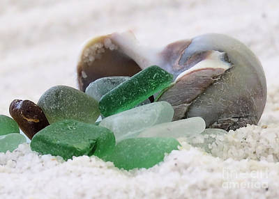 Photograph - Beach Treasures Of The Day by Janice Drew